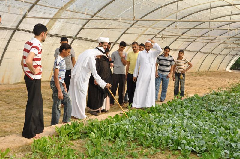 مزرعة الخويلدي - أبو معن - 1432 2